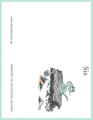 Sis Set 1 Book 10