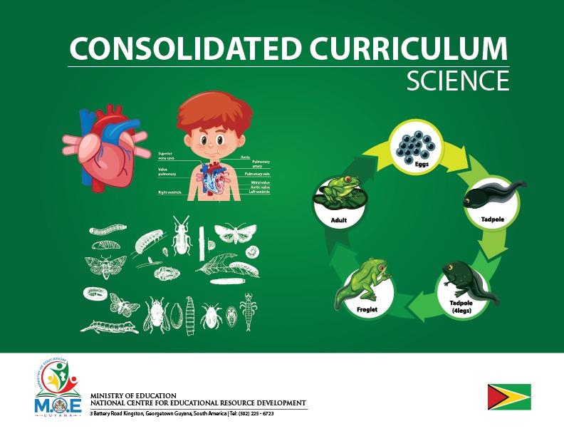 Science - Covid19 Curriculum